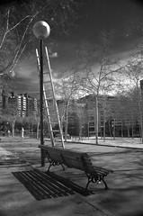 en el parque 1 (Corto Maltes) Tags: madrid park parque trees light espaa tree luz stairs arbol spain farola streetlight day arboles banco dia escalera infrared escaleras infrarrojo infrarrojos infrarroja