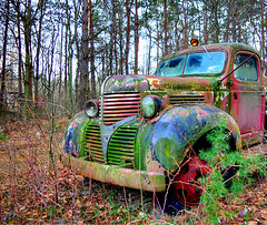 One-Eyed Dodge redux (norjam8) Tags: old red green abandoned photoshop truck vintage moss rust colorful antique decay rusty pb dodge headlight psychedelic fp mossy hdr oneeye e11 photomatix colorphotoaward norjam8 imgp1648h2p2 norjamss