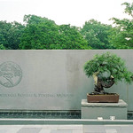 National Bonsai & Penjing Museun, Washington, DC thumbnail