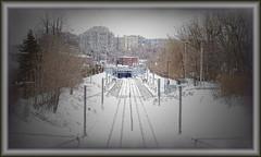 In a Distance (cornsilk) Tags: trees winter snow station train photoshop buildings view quebec montreal grain traintracks surreal railway places poles railroads cornsilk