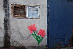 City flowers (Mark Rutter) Tags: city uk flowers england urban all decay f3 coventry midlands i120 markrutter