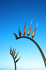 Fire In The Sky (|neurosis|) Tags: blue red sculpture color art beach canon exhibition perth cottesloe chilli sculpturesbythesea 10faves
