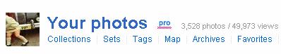 Flickr views