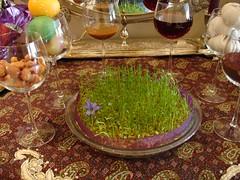 DSC00572.JPG (tannazie) Tags: traditional norouz persiannewyear noruz haftsinn sabzeh samanu senjed