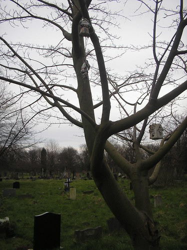 cemetery manchester grove willow stockport churchyard