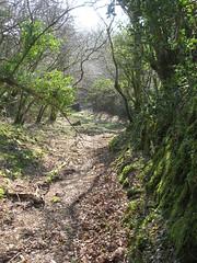Millpool path