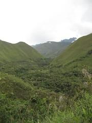 Jungle Trail to Machu Pichu 007 (regiroo2) Tags: machu pichu trail jungle