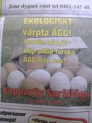 Ägg liten