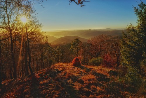 Herbstwanderung zur Hohen Warte