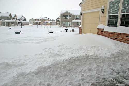 Our driveway this morning before we plowed/shoveled it