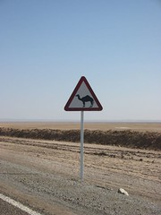 Camel Crossing (Sean Paul Kelley) Tags: khorasan omarkhayyam tabas dashtikavir nishapur