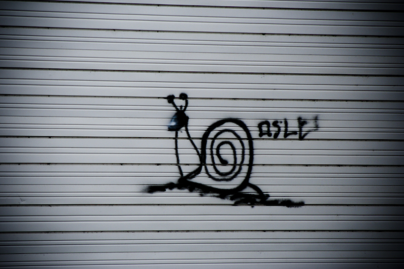 Snail and Graffiti