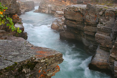 Abisko Canyon at Dawn - about 2 a.m. (Circle of Light Photography) Tags: summer nature water rock stone river landscape scenery sweden lappland north swedish canyon arctic lapland lichen scandinavia northern scandinavian norrland abisko northernsweden abiskocanyon