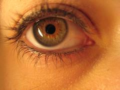 oTRo PuNTo De ViSTa (RoOoOo!!!) Tags: macro eye canon ojo eyes ixus reflejo mirada reyes pupila sinretoques
