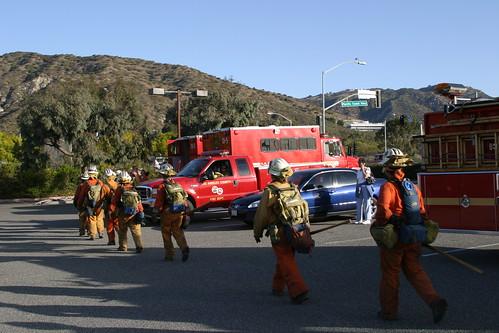 Fire crew in Bluff Park