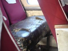 Bus seat on Sunali bus