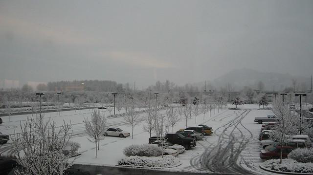 Snowy Springfield