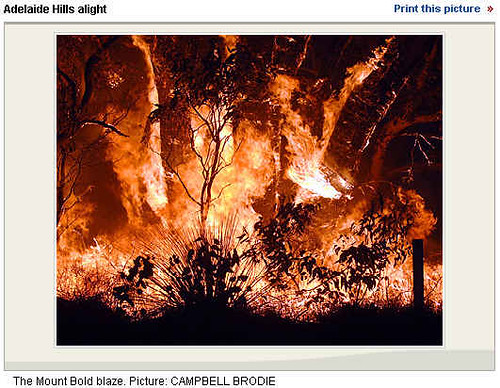 The Mount Bold blaze. Picture: CAMPBELL BRODIE
