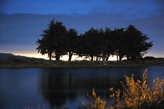 Estuary at midnight (gcquinn) Tags: trees usa bay san francisco geoff estuary midnight quinn geoffrey travelerphotos