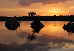 Sunset over the Lagoon (Patrick Costello) Tags: sunset d50 lagoon explore srilanka specland abigfave colorphotoaward yalavillage