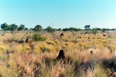 grasslands landscape (Gary L Warner) Tags: landscape centralia animalarchitecture