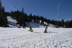 Snow 001 (Jill Huang) Tags: snow sledding boreal 20070217