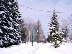 Promenade-d'hiver