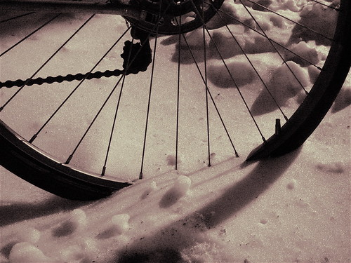 Iced Bicycle