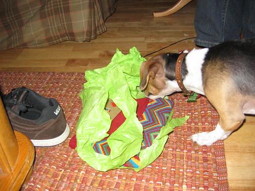 Bitsy opening her Xmas gift