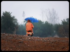 Bicicleta y paraguas - Bicycle and umbrella (jose_miguel) Tags: street españa man color colour rain bicycle miguel fog umbrella calle lluvia lomo spain searchthebest quality jose bicicleta morocco maroc marrakech marrakesh stolen marruecos paraguas soe niebla hombre robado blueribbonwinner supershot magicdonkey outstandingshots flickrsbest 25faves marraquech specobject bonzag panasoniclumixfz50 shieldofexcellence anawesomeshot colorphotoaward impressedbeauty travelerphotos photopleaseoxxx