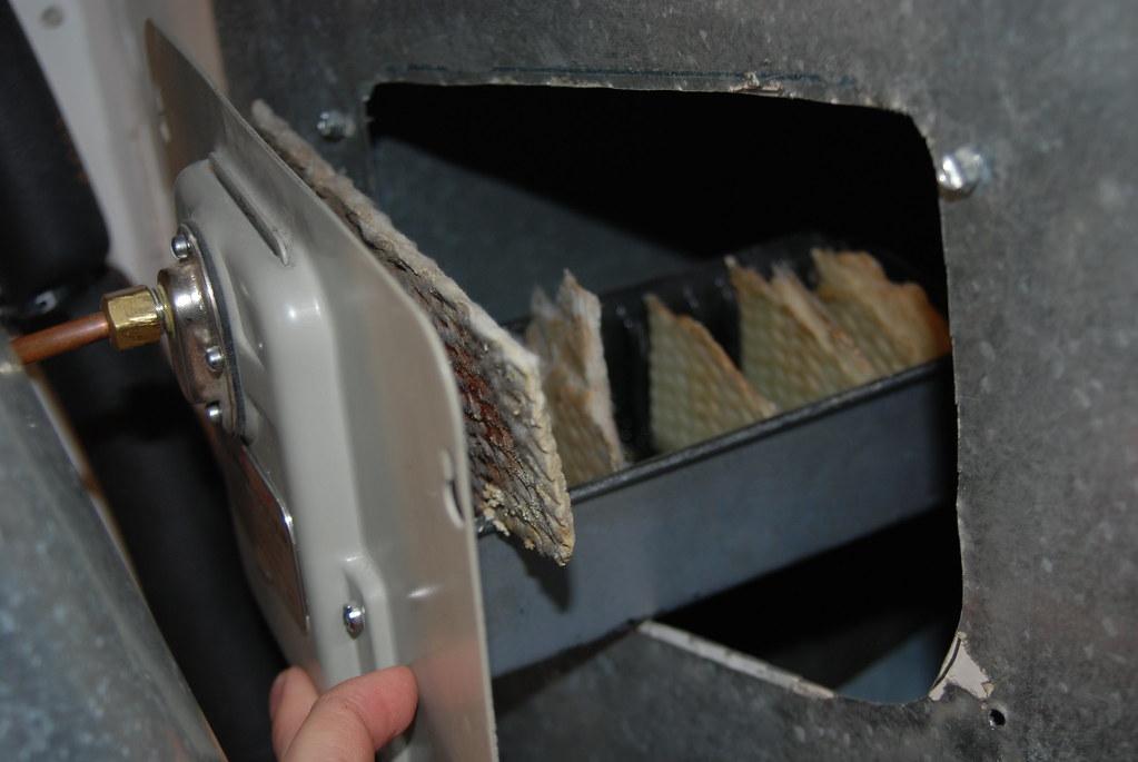 Old, Moldy Humidifier Plates