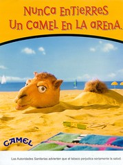 CAMEL-26