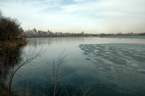 Central Park Water