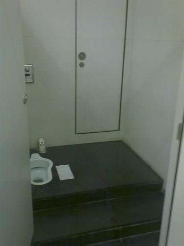 Big toilet