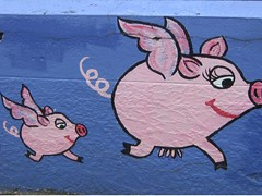 Street art, somewhere between Leura and Katoomba (Princess_Fi) Tags: bluemountains