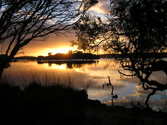 Sunrise (PositiveVibrations) Tags: morning sky orange water yellow sunrise reflections landscape australia eow beautifulcapture colorphotoaward aplusphoto flickrenvy superbmasterpiece wowiekazowie robertssunrise flickrelite thecoolestdamncoolphotographersintheworld naturewatcher exploreunexplored skyshades