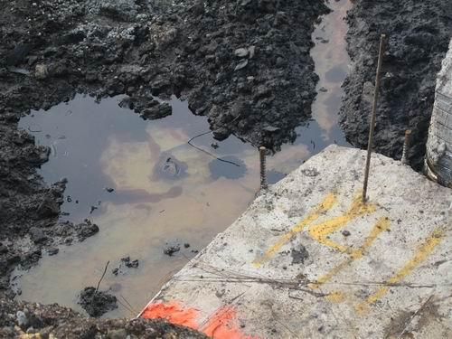 Roebling Oil1