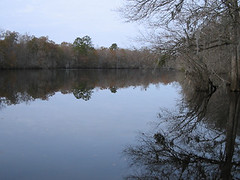 Little Pee Dee River Vista (catchesthelight) Tags: travel trees sc buildings river cypress antiquity payitforward