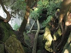 Kelso Hiking Sept 06 238 (travellingzenwolf) Tags: hiking kelso escarpment zenwolf