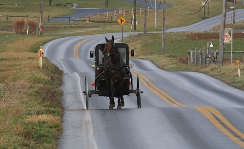Amish buggy on my favorite Lancaster road.