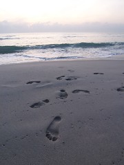 Footprints in the sand - Chaweng Mornings Photo credit: jetalone