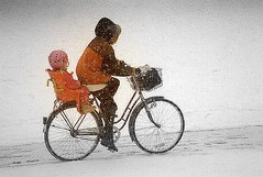 Biking in snowstorm (Per Ola Wiberg ~ Powi) Tags: winter snow bicycle sweden stockholm priceless snowstorm 100v10f loveit sverige 1994 blizzard sn cykel musictomyeyes northstar naturegroup friendsforever vllingby minolta7000 photohobby mybestphotos mostintresting snstorm flickrstars fineartphotos theworldinmyeyes golddragon mywinners mywinner abigfave flickrgold thethreeangels 210005107 superphotos amazingshots theothervillage flickrbronzeaward heartawards theunforgettablepictures diamondstars eperke onlynatureaward justlovelyphotos sasaward flickridol goldstaraward goldendragonaward thebestshot spiritofswedennorway overtheshot flickrballoonaward naturestreasures artofimages angelawards tif seasonsmagic diamondphotographersclub pegasusaward flickrsgottalent mygearandme fireworksofphotos flickrbronzetrophy flickrsilvertrophygroup level1photographyforrecreation