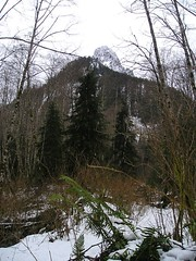 Lake Serene Trail vies