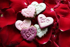 Valentine's Day 2007 II (sugar-bliss gnome) Tags: food flower rose cookie heart valentinesday fondant sweetcandy impressedbeauty ibybvd072