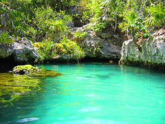 Xel-ha (firefly242) Tags: vacation mexico paradise exotic tropical caribbean coolest xelha tropicalparadise blueribbonwinner besttropical impressedbeauty