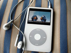 iPod served on a bed of stripes (Claudia1967) Tags: blue white home apple gold ipod stripes objects player hues pixar imagination cushion 2007 strikeapose forthebirds claudia1967