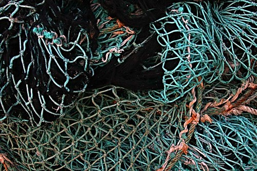 blue fish net chincoteague
