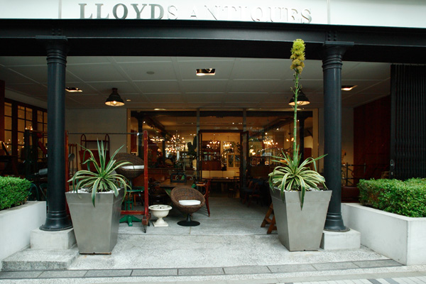 Lloyd's Antiques Aoyama/ロイズ・アンティークス青山