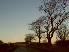 one two tree (Lidwit) Tags: morning sun tree clouds sunrise geotagged dawn scotland early north daybreak cleland lanarkshire