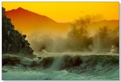 _MG_1284 (ssabin) Tags: explore specnature abigfave outstandingshot colorphotoaward